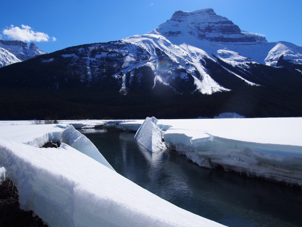Icefield Parkway.