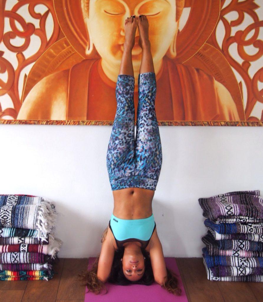 the travel yogi mexico
