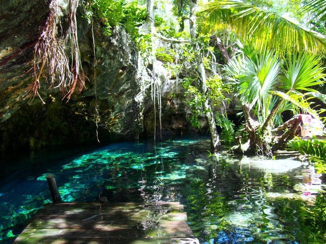 snorkel or scuba in cenotes