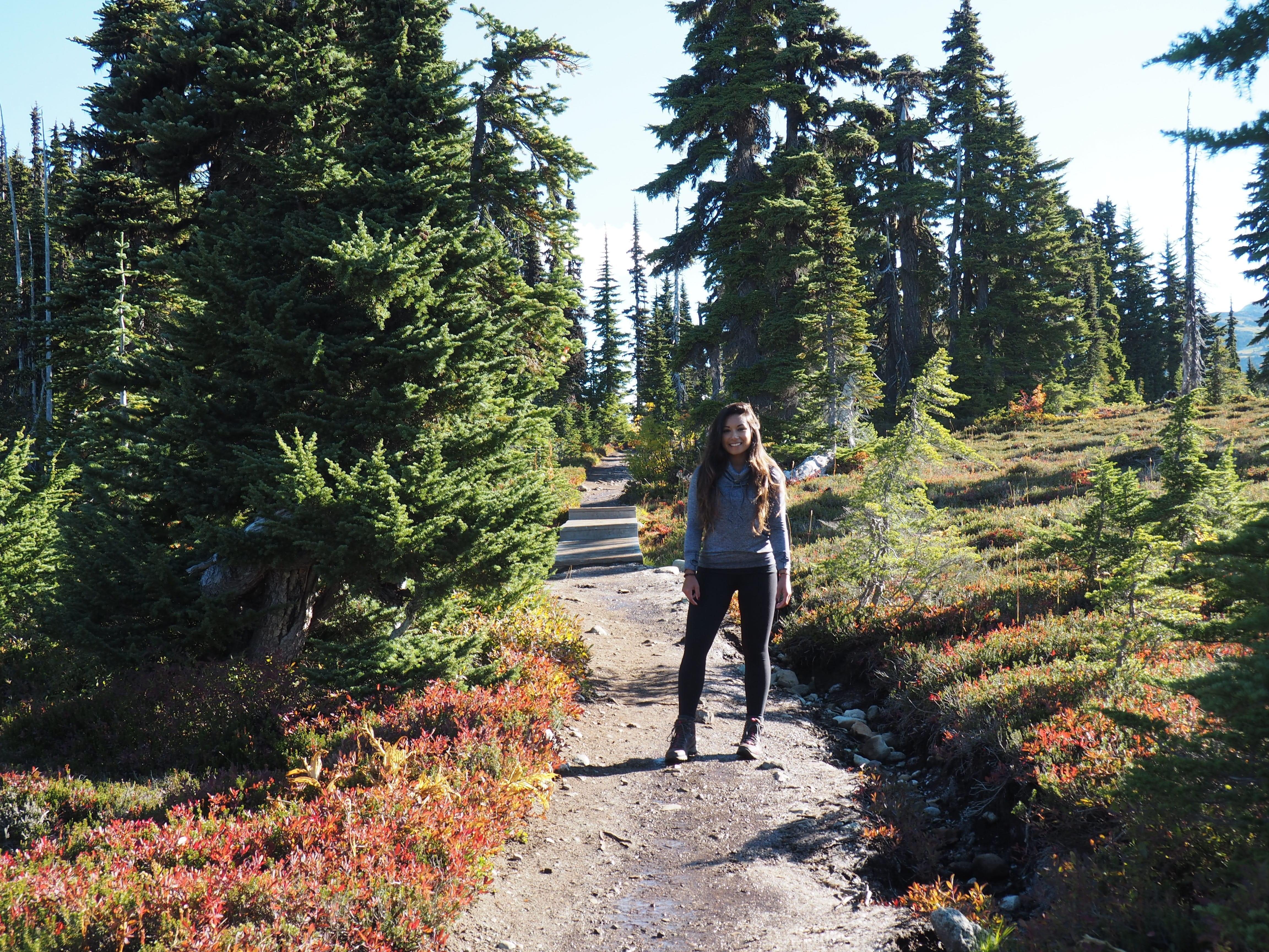 Hiking Panorama Ridge