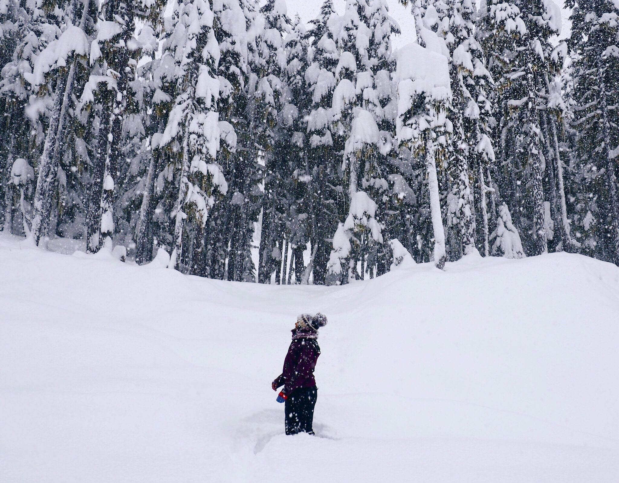 Whistler Places To Visit In Winter