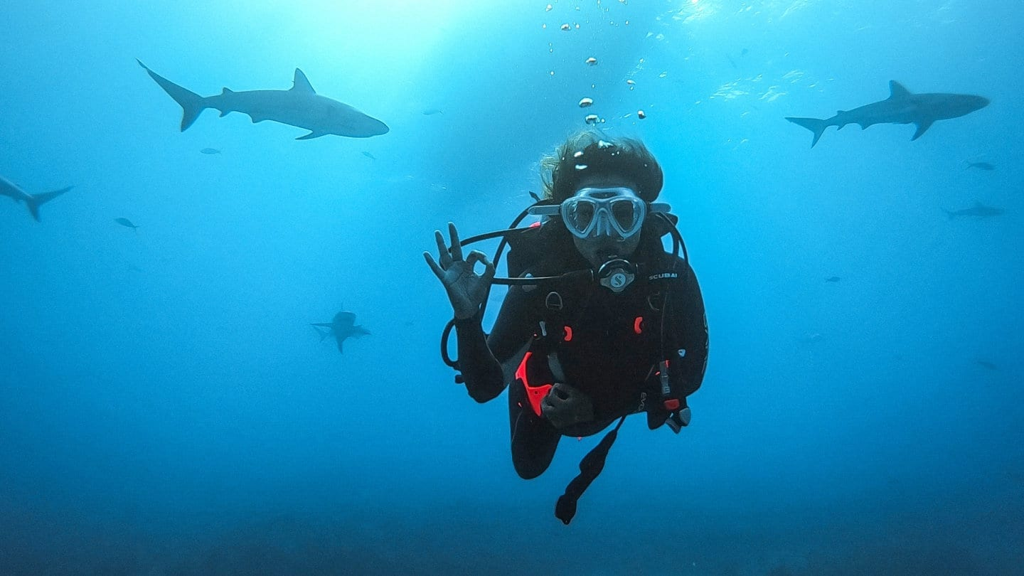 Scuba Diving From A Liveaboard In The Bahamas With The